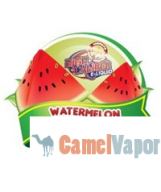 US Made eLiquid - Watermelon Bubble Gum
