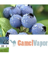 VG Blend US eLiquid - Blueberry Frost