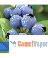 eLiquid - Blueberry